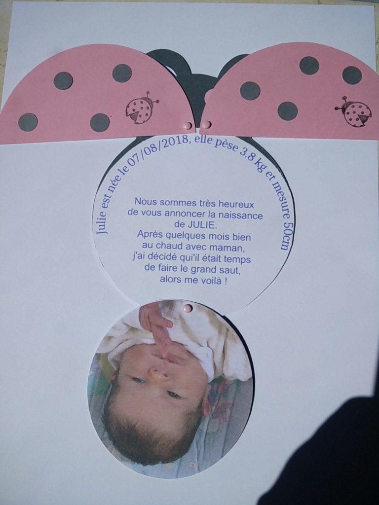 carte naissance coccinelle